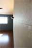 2階寝室 スキップフロア リサイクル内装ボード